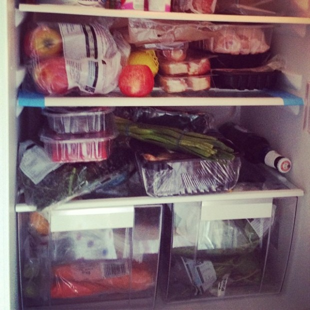 Paleo fridge - what it looks like